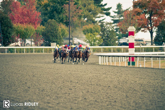 Keeneland Racing 2