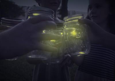 Fireflies FINAL_00421